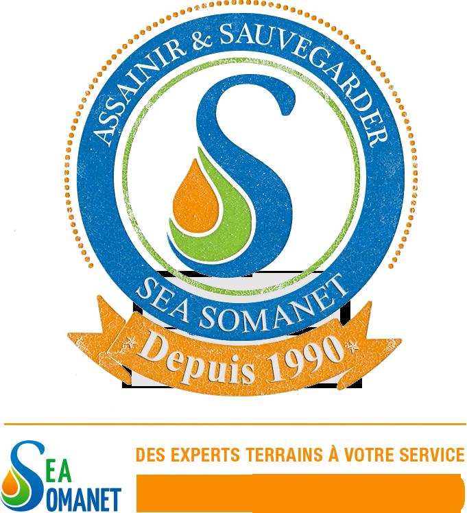 Sea Somanet Depius 1990